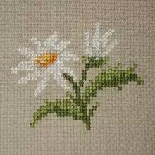 Flower Buds pattern