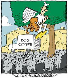 Heathcliff Comic Strip, October 10, 2016     on GoComics.com