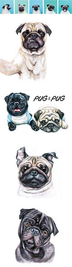 Pugs                                                                                                                                                                                 More