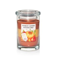 Autumn Trio : Layered Tumbler Candles : Yankee Candle