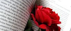 Diada de Sant Jordi. San Jordi es como el Día de San Valentín con algunos giros castizos. El evento principal es el intercambio de regalos entre los novios. - www.donquijote.org/cultura/spain/society/holidays/sant-jordi.asp