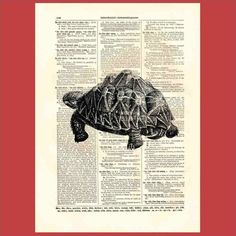 Vintage tortoise - upcycled 8x10 1898 dictionary page print - BONUS - Buy 3 Prints, Get 1 More For FREE