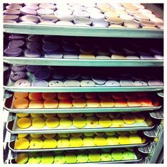 Busy day for macarons  #macaron #soirette #baking