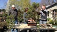 Training and taking care of Bonsai requires patience and creativity. The Bonsai Society of Northeast PA show how to tame...
