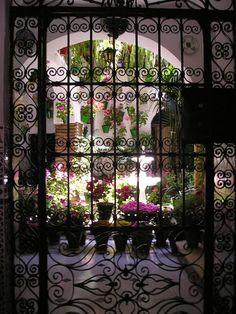 Un patio andaluz en Córdoba en mayo. España