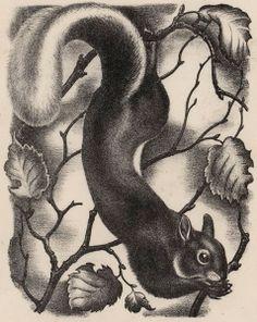 Sheffy the squirrel, c.1941