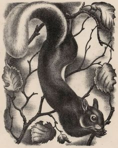 eileen mayo ~ sheffy the squirrel, c.1941