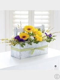This springtime arrangement is filled with pretty seasonal flowers in bright yellow, fresh white and purple for contrast. Perfect for a windowsill or table to add a dash of spring sunshine! Easter Flowers, Valentines Flowers, Mothers Day Flowers, Christmas Flowers, Send Flowers, Spring Flowers, Best Flower Delivery, Flower Delivery Service, Online Flower Delivery