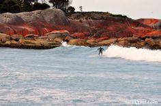 Superb Sunday surfing spot - Bay of Fires, Tasmania by Julie Halleur Tasmania, Places To Go, Surfing, Shots, Fire, Australia, Sea, Water, Outdoor