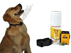 Special Offers - NO BARK Collar Citronella Spray Anti-Bark collar for Dogs Kit  Safe Effective and Humane Dog Barking Control collar - In stock & Free Shipping. You can save more money! Check It (July 15 2016 at 03:15AM) >> http://doghousesusa.net/no-bark-collar-citronella-spray-anti-bark-collar-for-dogs-kit-safe-effective-and-humane-dog-barking-control-collar/
