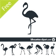 silhouette vector flamingo