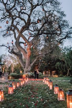 A Romantic Proposal with Valentine's Day Inspiration! Evening engagement photo… A Romantic Proposal with Valentine's Day Inspiration! Cute Proposal Ideas, Proposal Pictures, Romantic Proposal, Perfect Proposal, Romantic Photos, Wedding Goals, Wedding Events, Weddings, Wedding Ideas