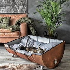 Memes, , and pet: upcycled pet bed from an oil barrel upcycled table dog bed, upcycled pet bed from an oil barrel meme on meme. New Swedish Design, Oil Barrel, Cat Room, Pet Furniture, Industrial Dog Beds, Cheap Furniture, Industrial Style, Furniture Ideas, Home Decor Ideas