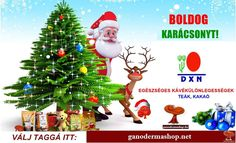 This Christmas Secret Santa Career Bonanza for you in Digital Marketing Course Get Your Job Offer Letter time of admission only Limited Time Offer⏰ To know more about this career opportunity in Digital Marketing what's app me on : 8433611354 Merry Christmas Song, Pre Christmas, Christmas Music, Christmas Ornaments, Secret Santa, Digital Marketing, Lettering, Holiday Decor, Screensaver