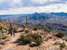 Oracle to Picketpost Trip on the Arizona Trail with AZT Expeditions . Photo: Scott Anderson