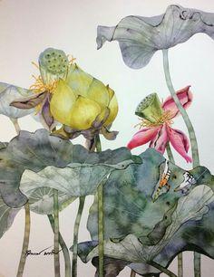 27 Ideas For Flowers Drawing Loto Nature Illustration, Botanical Illustration, Watercolor Flowers, Watercolor Paintings, Drawing Flowers, Watercolors, Lotus Art, Encaustic Art, Botanical Art