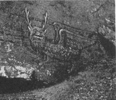 earliest photos of alton, illinois | The Nephilim Chronicles: Fallen Angels in the Ohio Valley: Is the ...