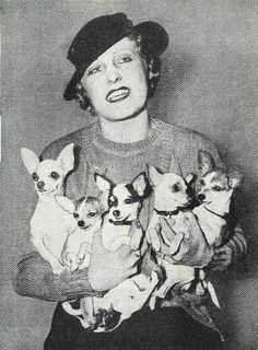 Chihuahua Lady This is going to be me. I'm going to own more chihuahuas :) lol