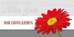 Grußkarte 006701-836, DIN-lang Format, Wir gratulieren, inkl. Kuvert. Mit Blindprägung! Grußkarte 006701-836, DIN-lang Format, Wir gratulieren, inkl. Kuvert.