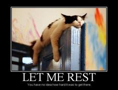 Let me rest