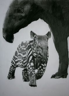 (SOLD) #56 Malayan Tapir