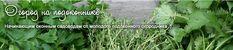 Огород на подоконнике | Начинающим оконным садоводам от молодого подоконного огородника :)