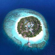 Angsana Ihuru, Island-resort situato su di un'isola deserta nell'atollo North Malé, grazie alla vasta varietà di vita marina, alle fantastiche barriere coralline, relitti, è uno dei più famosi centri di immersione delle Maldive. Per...