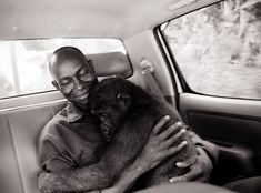 Ape Action Africa, 2008.www.apeactionafrica.orgRachel Hogan anticipated a long adventure throughout Africa when she packed her bags and left her Birmingham, UK home in 2001 at the age of 25.  She p...