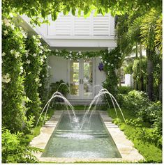 Perfect small pool and look at all of the climbing vines around the house!  Love it