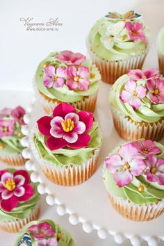 cupcakes by Alina Vaganova