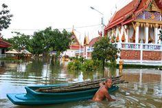 Das Meteorologische Institut gab am Samstag eine Warnung für die Menschen in allen Regionen heraus, um für einen massiven Regen mit darauf folgenden Überschwemmungen in einigen Bereichen heute und während die nächsten Tage gerüstet zu sein.  Die Abteilu