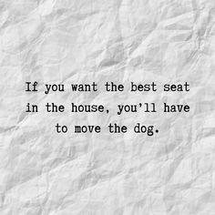 If you want the best seat in the house, you'll have to move the dog. Funny Dog Sayings Do you need some awesome dog sayings? Check out this huge assortment of short dog quotes and dog sayings. Funny Dog Jokes, Dog Quotes Funny, Cat Quotes, Dog Memes, Animal Quotes, Words Quotes, Funny Dogs, Funny Animals, Dog Humor