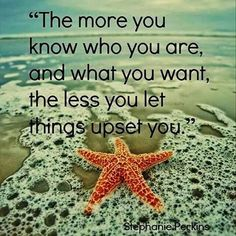 The more you know who you are,  and what you want,  the less you let things upset you.