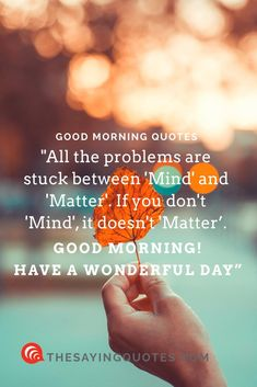 """""""All the problems are stuck between 'Mind' and 'Matter'. If you don't 'Mind', it doesn't 'Matter' -Good morning ! Have a wonderful day. Wonderful Day Quotes, Good Morning Beautiful Pictures, Cute Good Morning Quotes, Morning Quotes Images, Morning Quotes For Him, Good Morning Texts, Good Morning Good Night, Good Morning Wishes, Beautiful Images"""
