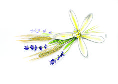 Lavender, Vanilla and Oats in graphite and colored pencil by Robert Ciampa.  http://www.ciampa-illustration.com