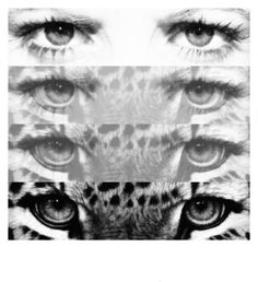 Transformation at its best... A simple pair of human eyes transformed to one of natures strongest most powerful animals just in two stages!
