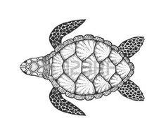 tatuaggio tartaruga: Sea turtle in line art style. Hand drawn vector illustration. Top view. Design for coloring book. Set of ocean elements