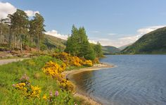 Loch Dughaill, Wester Ross. Wester Ross, North Coast 500, Brown Trout, Fly Fishing, West Coast, River, Outdoor, Scotland, Trout