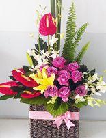 dien hoa gia re, hoa hong tang anh Giỏ hoa được sử dụng hoa hồng tím nhập ngoại với cách cắm nghệ thuật tạo nên giỏ hoa đẹp.  Liên hệ đặt hàng Hotline: 0988 903 205 - 0984 08 1332 Email: saledienhoa360@gmail.com FB: https://www.facebook.com/Dienhoa360 Web: http://dienhoa360.com Yahoo1: levien2004@yahoo.com Yahoo2: phansim1502@yahoo.com