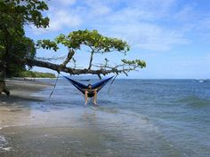 finally got my eno  now wish i had a place like this to put it eno single nest hammock   camping and nests  rh   pinterest