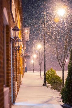 A snowy street tonight in Wyndhurst.