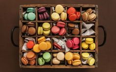 istanbul-macaron Macarons, Istanbul, Sweets, Mugs, Tableware, Kitchen, Cakes, Google, Dinnerware