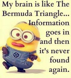 Funny Quotes Minions And Minions Quotes Images. Read amazing these Funny Quotes Minions And Minions Quotes Images . Funny Minion Memes, Minions Quotes, Funny Jokes, Minion Humor, Minion Sayings, Cute Minion Quotes, Hilarious Quotes, Fun Funny, Super Funny