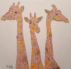 1000 Images About Millie Marotta Jirafas On Pinterest