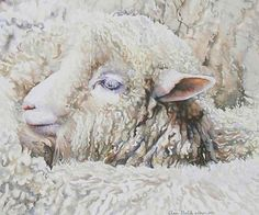 Lamb surrounded by others painting by Ann Balch, CSPWC, SCA