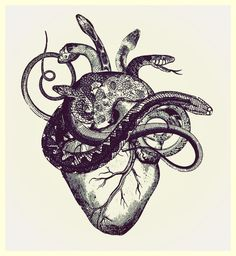 Serpent heart