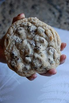 giant levain bakery style chocolate chip walnut cookies