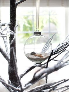 Beach Scene Ornament in 10 Coastal-Inspired Holiday Decorating Ideas from HGTV!!! Bebe'!!! Twig tree with sand and shell filled glass holiday ornament!!!