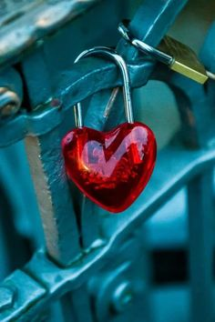 Red and Teal Blue - Heart lock on fence I Love Heart, Key To My Heart, Happy Heart, My Love, Heart Pictures, Heart Images, Images Of Love Hearts, Heart In Nature, Heart Art