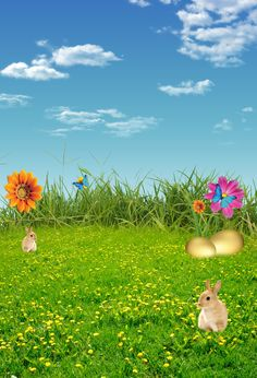 Easter Rabbits Flowers Grass under Blue Sky Shower Curtain Set Bathroom Decor